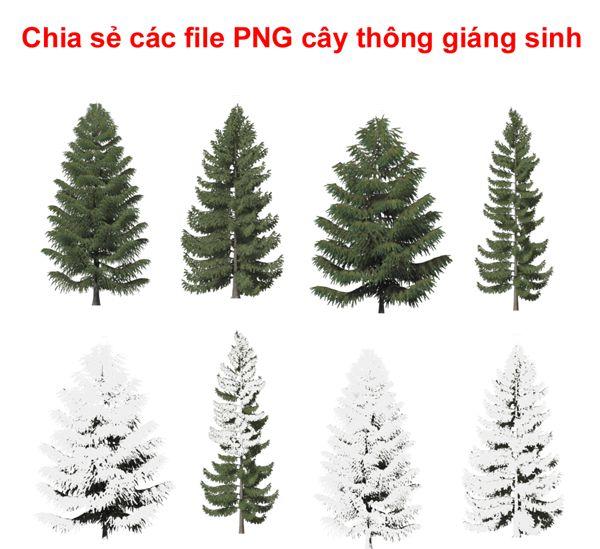 [PNG] Mẫu cây thông noel cực chất