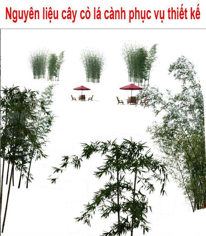 [PSD] Nguyên liệu cây cỏ lá cành phục vụ thiết kế