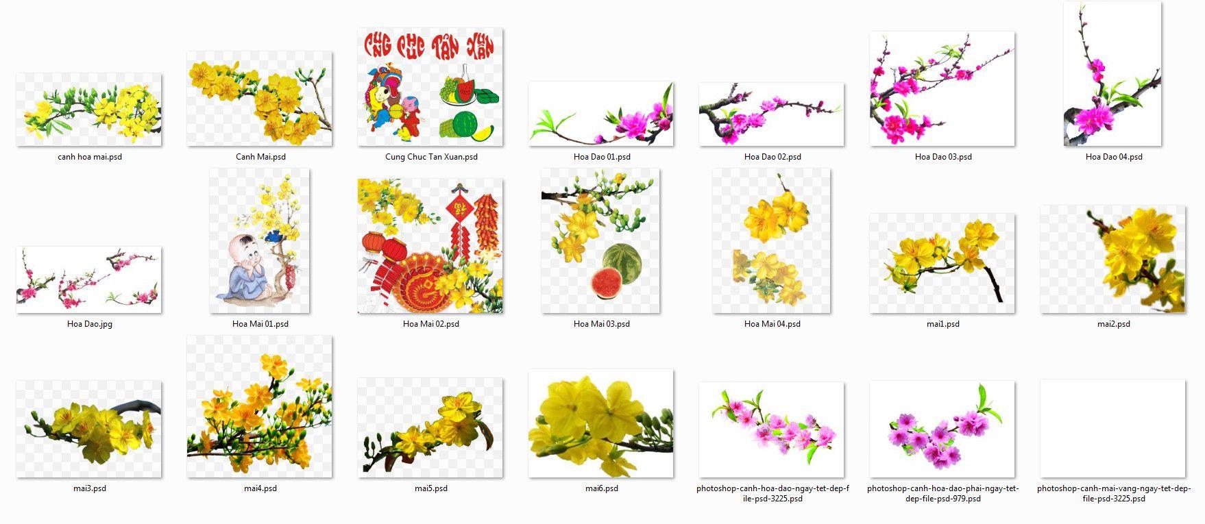 PSD Hoa đào, hoa mai tách nền dùng cho thiết kế TẾT